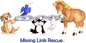 Missing Link Rescue